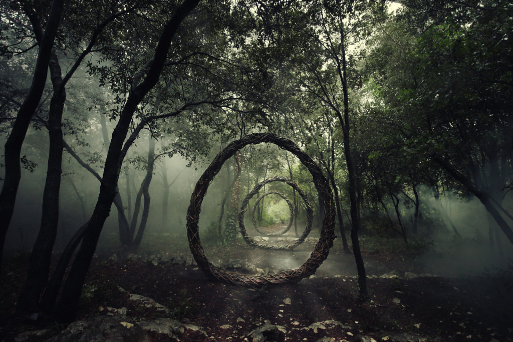 Wild forest - Spencer Byles