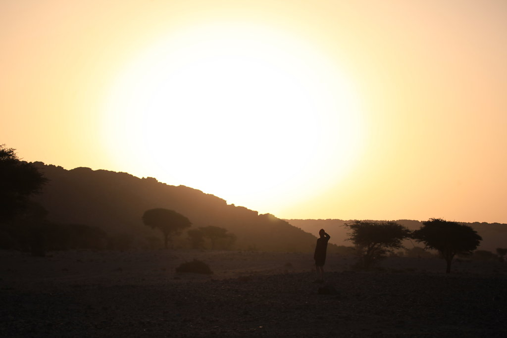 Astre du désert